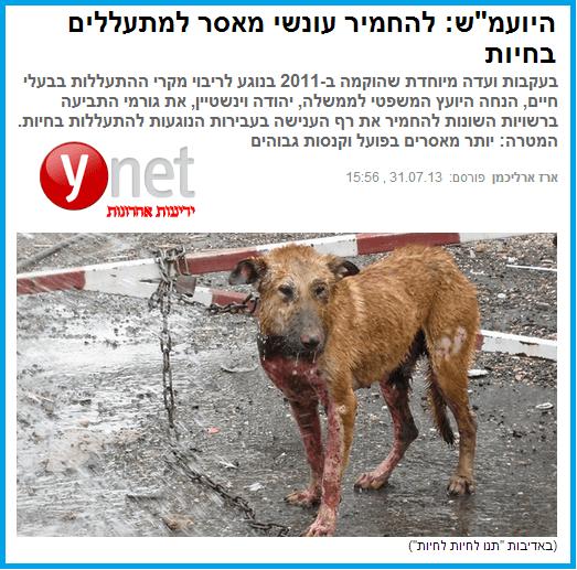 הכתבה שפורסמה ב-ynet. לחצו להגדלה